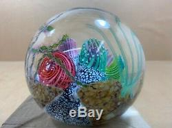 4 Huge Signed Mark Eckstrand Art Glass Sea Aquarium Coral Paperweight