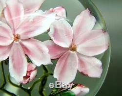 DANIEL SALAZAR Pink Clematis Flowers Art Glass Studio Paperweight, Aprx 3.5Wx3H